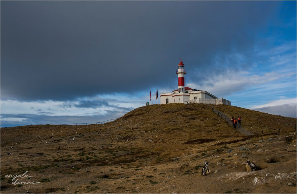 Punta Arenas Isla Magdalena lighthouse