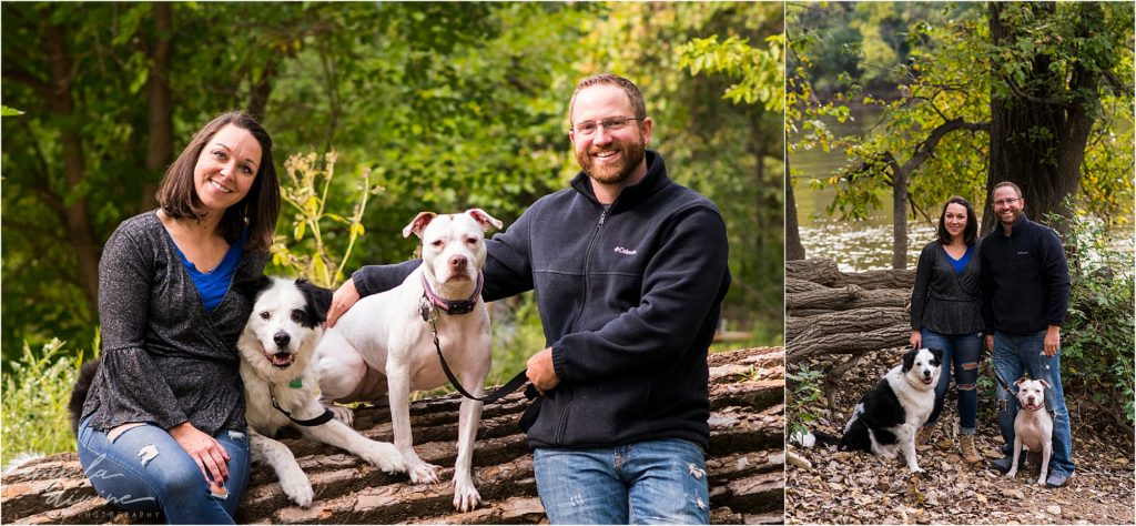 Minneapolis pet photographer- Fur is my family project - Maddie the border collie lab and Thule (too-lee) the pit bull